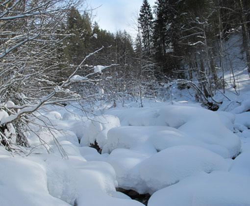 s_unberuehrte-winteridylle