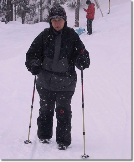 Die Winterwanderin