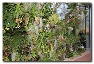 w_pflanzenvielfalt-auf-engstem-raum