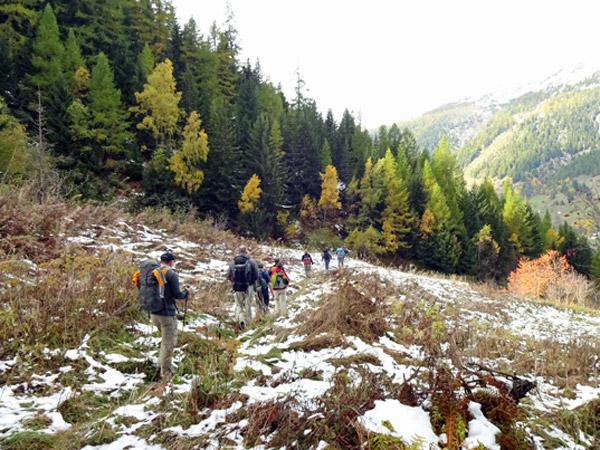 L_Das-Weiss-war-die-Leinwand-fuer-die-herrlichen-Herbstfarben